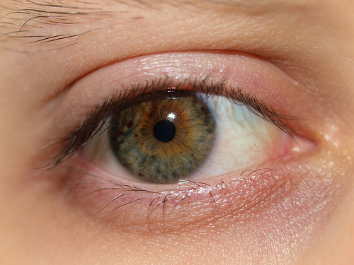 Tired Hazel Eye by MSVG, on Flickr